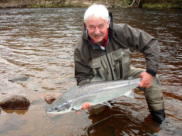 24lb Spring salmon about to be released on Altyre Estate, River Findhorn