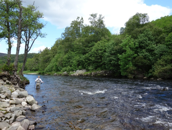 Wading the Polly pool on Ballindalloch