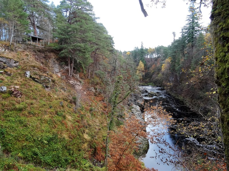 Upper Home Beat overlooking the Craigie pool with the fishing hut set in the pine woods above