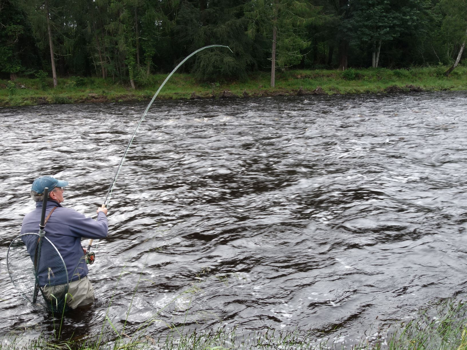 Mike Leach hooks one of two grilse from the Garden Pool on Altyre Estate, River Findhorn