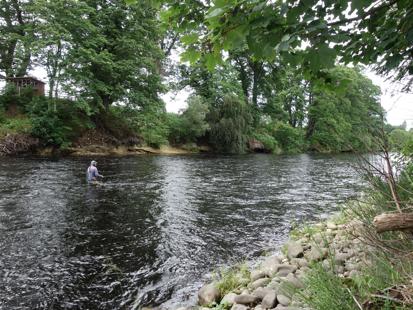 Wading the tail of the Roan Pool on Altyre Estate, River Findhorn