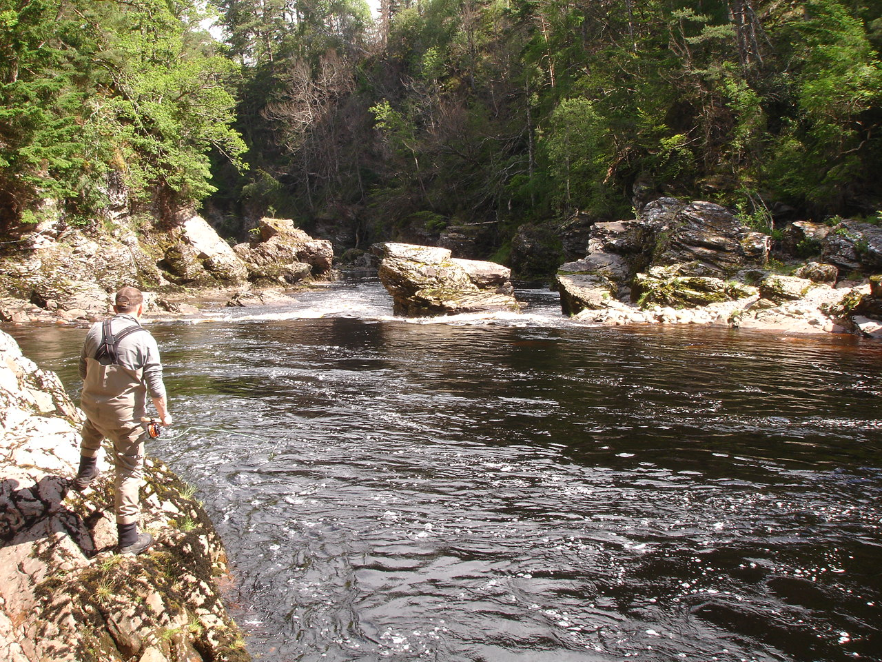 Summer salmon fishing in fantastic Whirling Hole Pool, Upper Home, Darnaway, River Findhorn