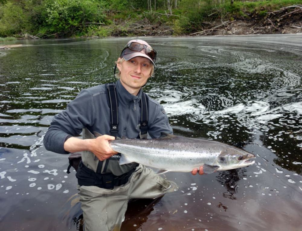 Salmon Fishing News Update June, 2016