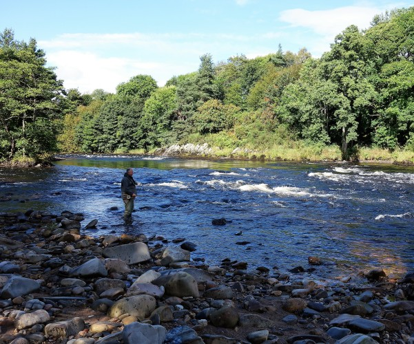 Fishing on River Spey, Knockando