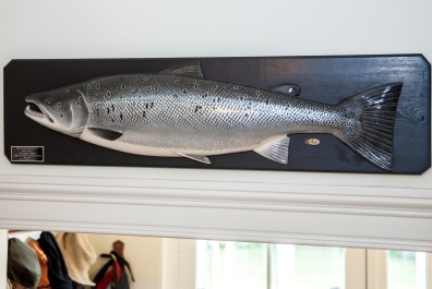 Salmon taking pride of place