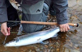 Johan Peter - 9 lbs - Palamore, Altyre Estate, River Findhorn