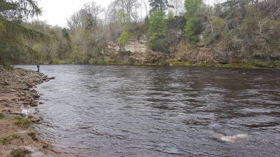 Vemund casting a fly over Palamore, Altyre Estate, River Findhorn