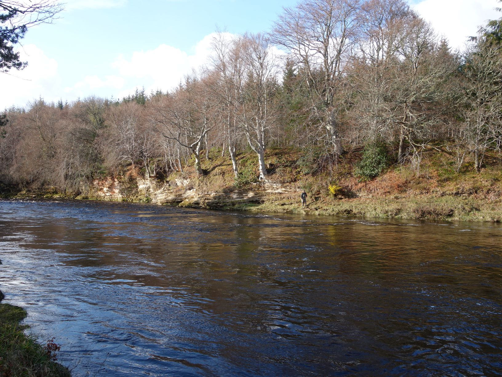 Palamore Island Pool on Meads of St. John, Darnaway, River Findhorn