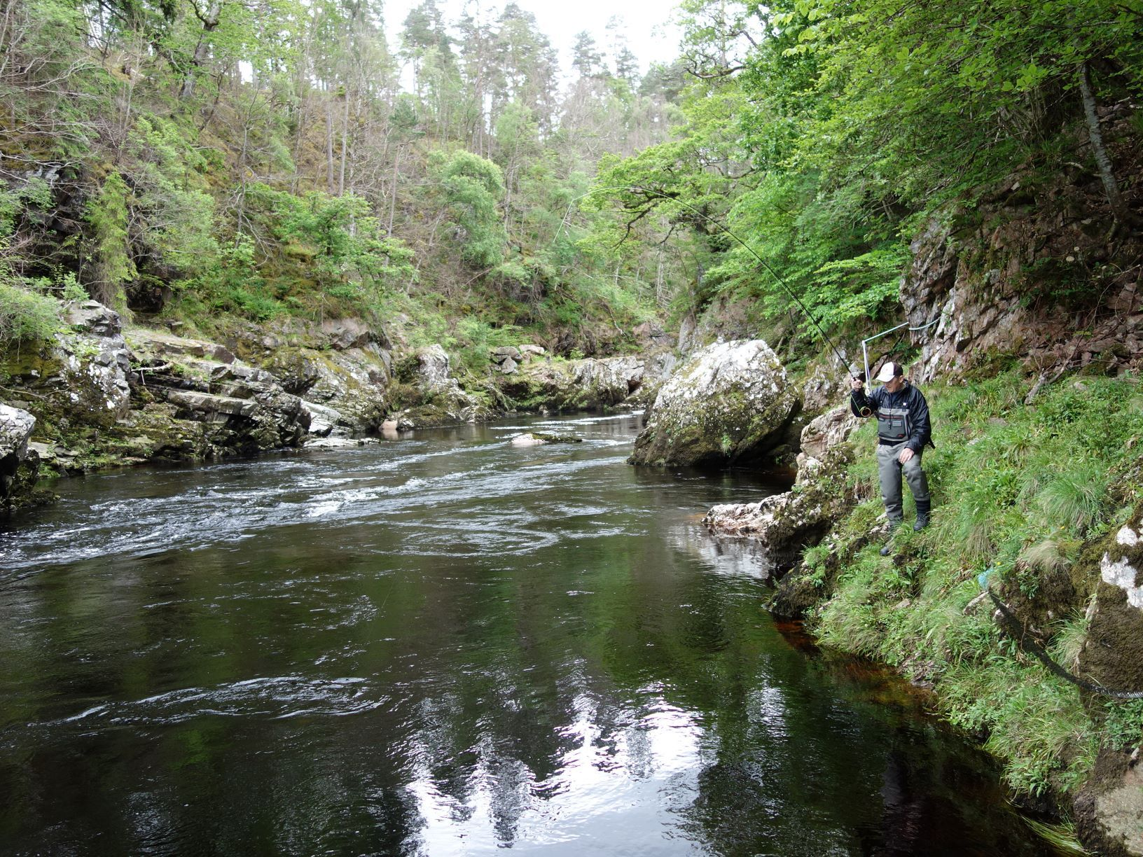 Leslie Tyson hooks a fish in the top of Craigie Pool, Upper Home Beat, Darnaway, River Findhorn