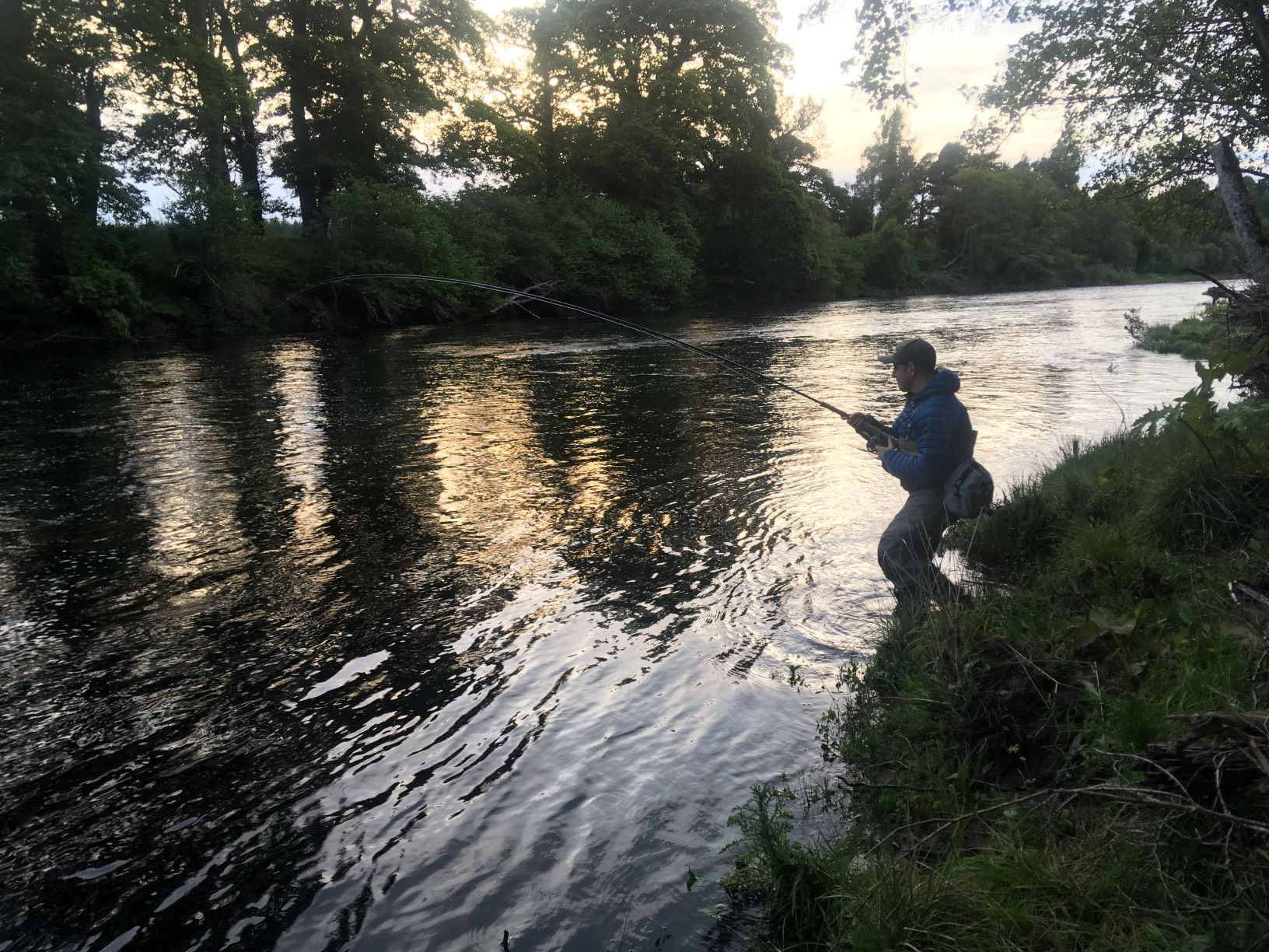 Another fished hooked in Tail of Roan in the gloaming, Altyre Estate, River Findhorn