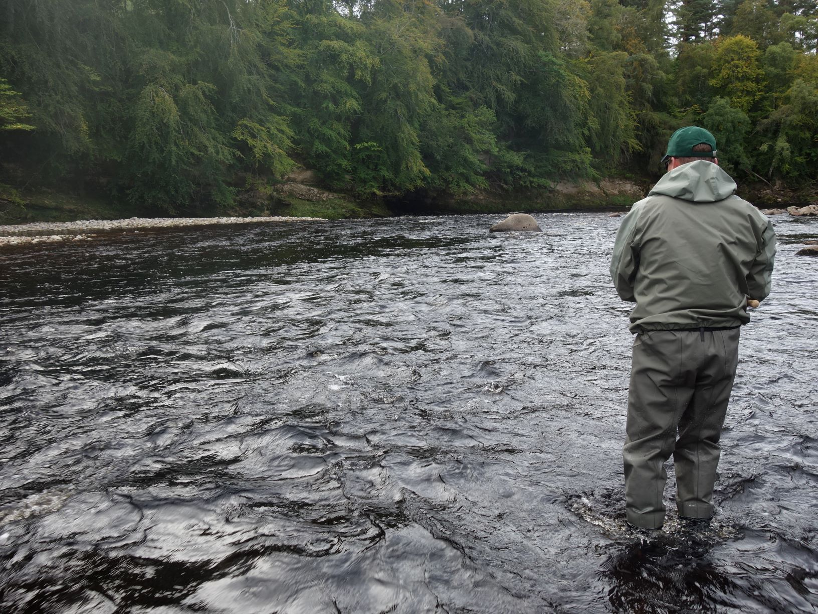 Perfect water levels as Rob Gilchrist from the USA casts a fly through William's Run on Altyre Estate, River Findhorn in September