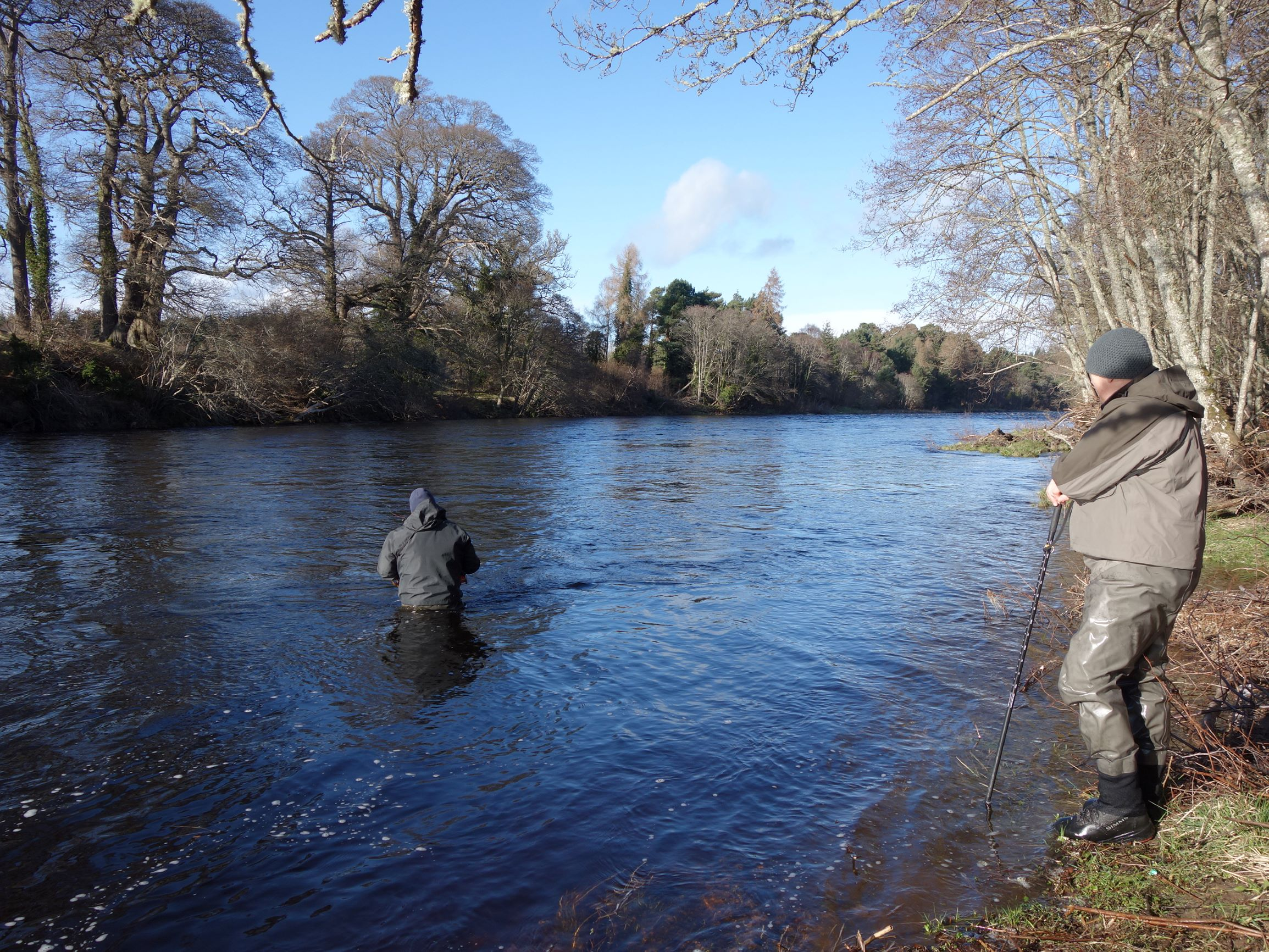 Tom Brown wading down through the tail of Roan Pool. Altyre Estate, River Findhorn in good high water conditions.